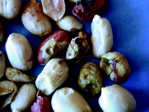 Peanut Grower July 2015_Page_11_Image_0002
