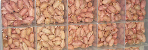 Peanut-Grower-November-2015_Page_15_Image_0001