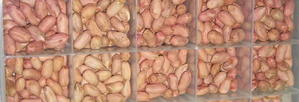 Peanut-Grower-November-2015_Page_15_Image_0001