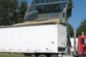 Shellers Contracting Smaller  Percentage Of Crop Each Year