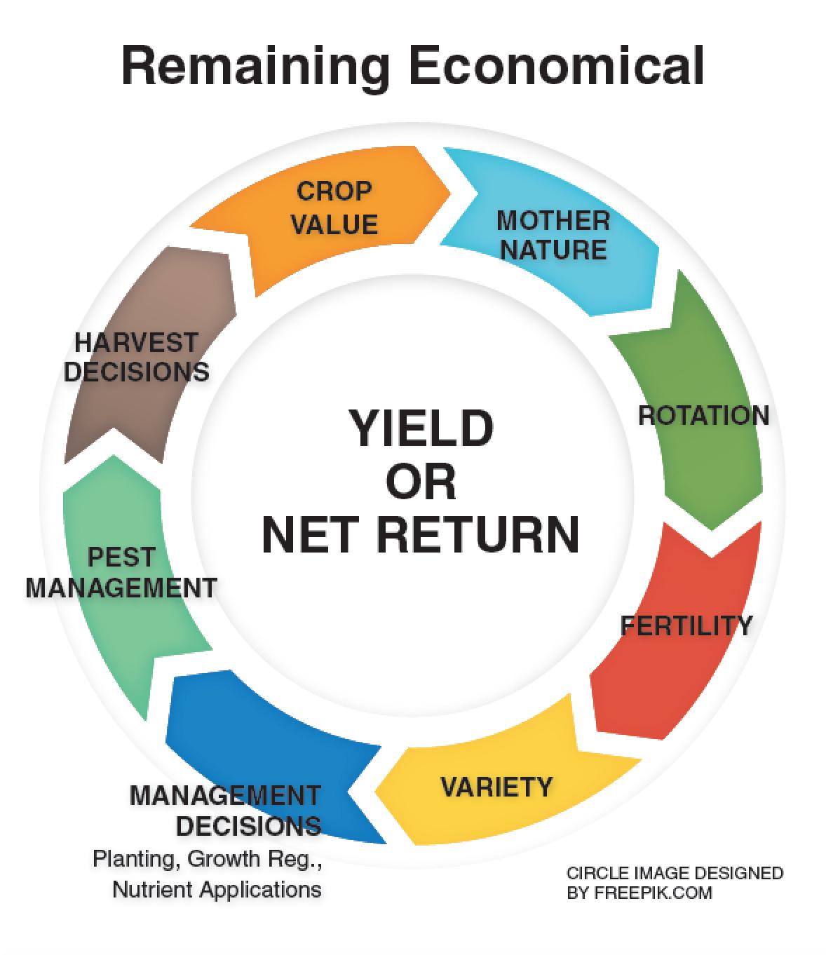 RemainingEconomical