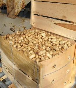 Peanut-Grower-May-2016_Page_08_Image_0001