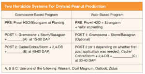 Two Herbicide Systems For Dryland Peanut Production