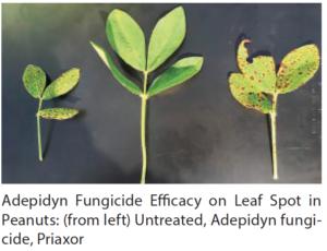new leaf spot fungicide
