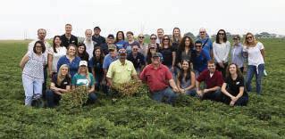 Texas peanut harvest tour