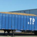 peanut exports