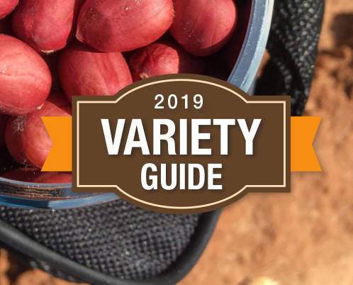 2019 Peanut Grower variety guide logo