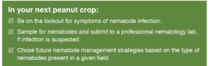 nematode signs in your next crop