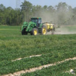 spraying peanuts
