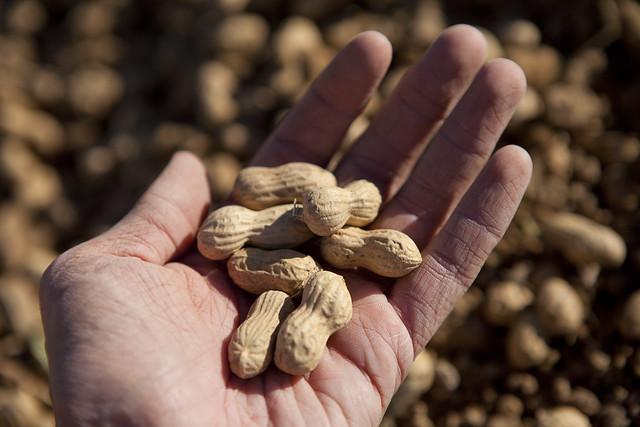arkansas peanuts