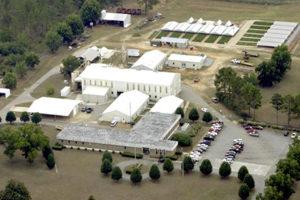 national peanut lab