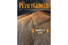 2020 <em>Peanut Grower</em> Variety Guide