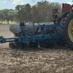 peanut planting