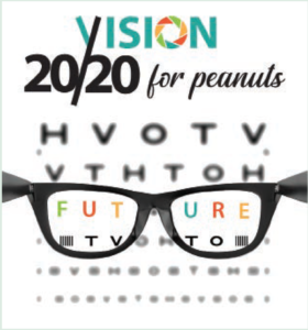 Vision 2020 for peanuts