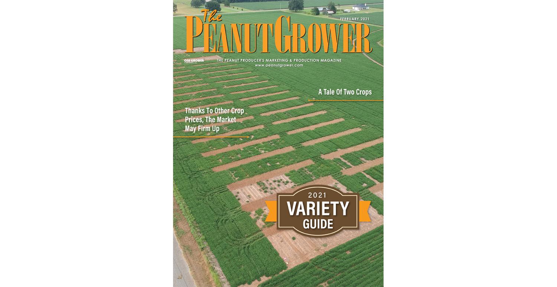 feb 2021 peanut grower cover
