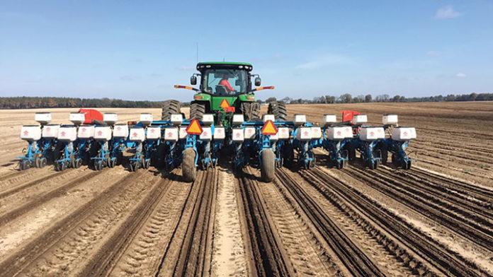 peanut planting progress